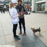 Promotion Agentur Deutschland verteilt Produktproben in Berlin